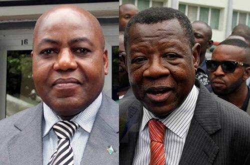 Article : Kabwelulu et Mende : des coutumiers de Kabila ?