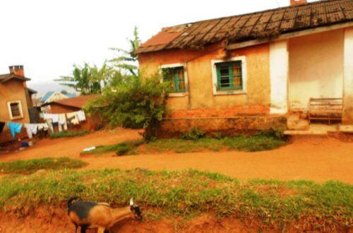 Article : RDC : Des bâtisses laissées par des Belges ne sont que l'ombre d'elles-mêmes